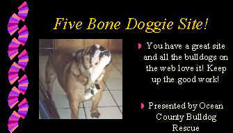 August 2000 Award presented by Ocean County Bulldog Rescue!  Click here to visit their website!