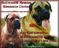 Bullmastiff Rescue Resource Center